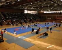 CEU Taekwondo (2006)